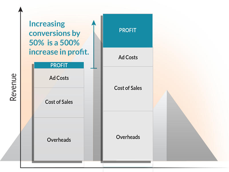 Increasing conversions by 50% is a 500% increase in profits.
